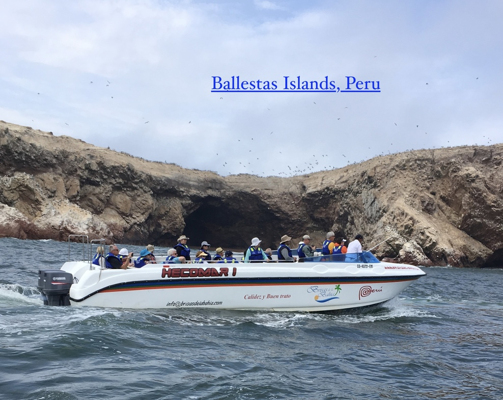 Ballestas Islands tour in Peru