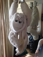 One of our cute room towel animals. Such a delight to come back to