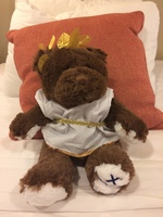 A teddy bear i order the Caribbean costume and they delivery the Greek costume