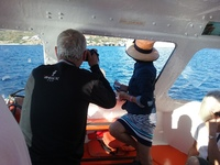 Photographing the ship in full sail from a tender