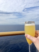 Mimosa on 1st sea day!!! Cuba in the background