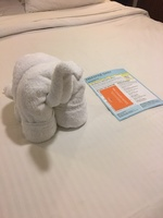 Loved all of the towel animals my cabin steward made! We were always excite