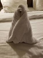 What is a cruise review without a towel animal?