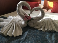The staff made this beautiful swans for us