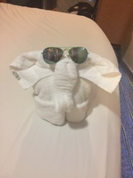 Cute towel animal!!