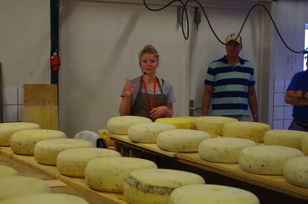 Tour of Booij Cheesemakers in Rotterdam, Netherlands
