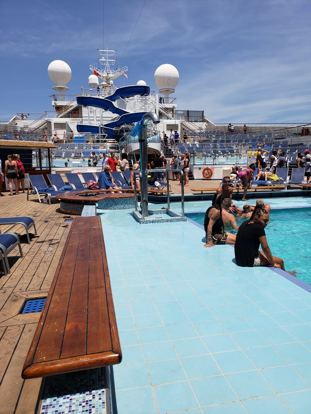 Photo Of The Entire Plant Of Dog Fennel Eupatorium: Pool, Spa, Fitness On Carnival Conquest Cruise Ship