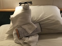 Our steward, Gloria, made cute things out of towels on three nights.  This