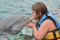 Kiss from dolphin