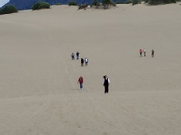 Climbing the sand dune at Carcross Desert