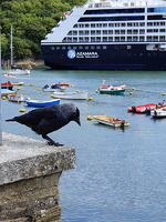 The Azamara Pursuit in the harbor of Fowey, Cornwall.