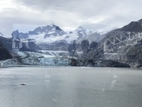 Glacier Bay, the day spent in Glacier Bay was worth the price of the entire
