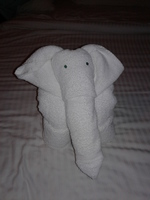 Towel elephant left on our bed in our cabin.
