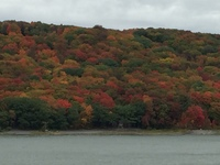 Autumn colours alongside the St Lawrence river on our way into Quebec