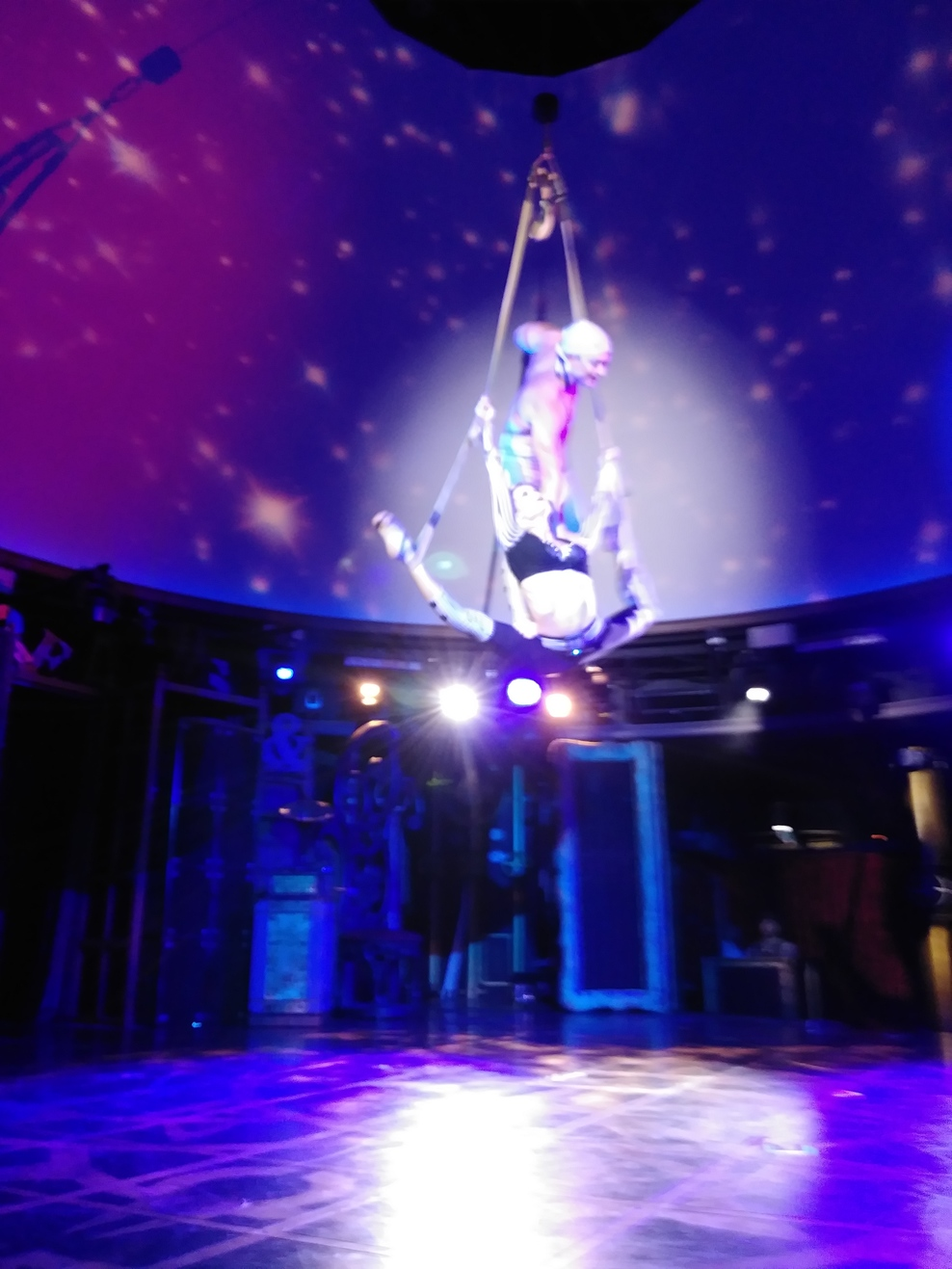 Cirque Dreams and Steam Dinner show. I read the food wasn't that great