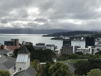 Views of Wellington from top of hill