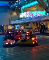 Bumper cars! So fun!
