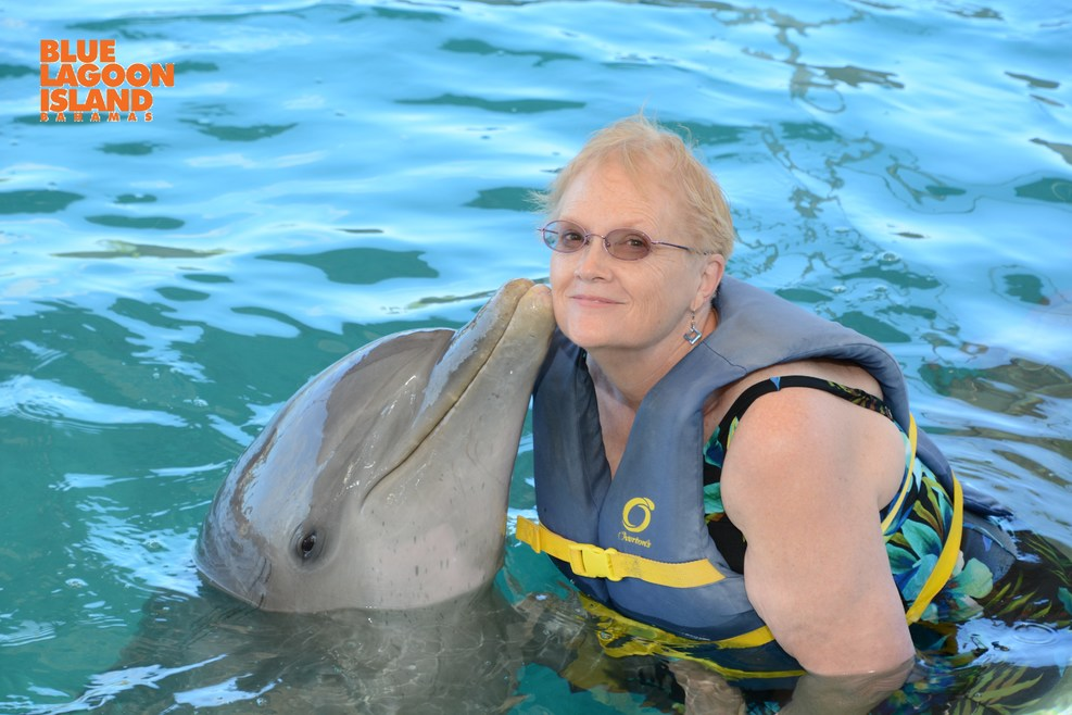 """""""Dolphin Kiss"""" available for a very reasonable cost on Blue Lagoon"""