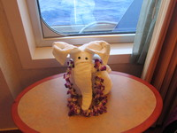 Towel animal, the small crack in the window (not the partition of the balco