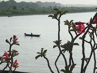 The Mekong River from our ship