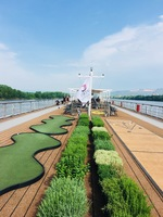 Upper deck garden and putting green