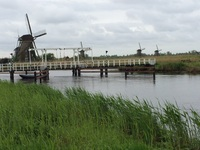 On our walking tour to Kinderdijk.