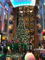 Christmas Tree Lighting in the Promenade