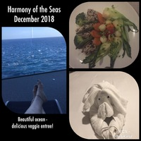 A little collage from our cruise....  My wonderful veggie meal at Wonderlan