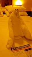 One of our many towel animals.
