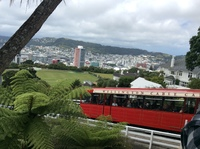 This is the cable car we rode in Wellington.