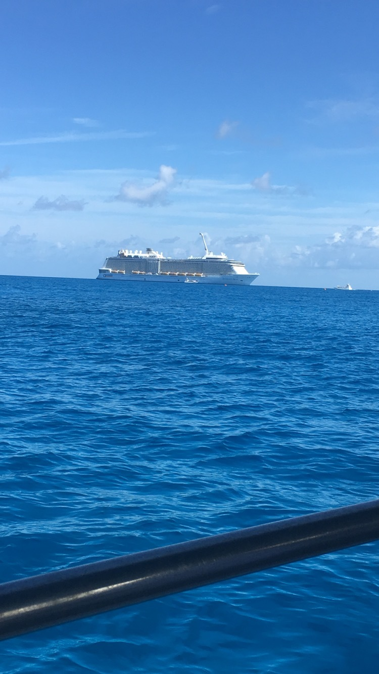 View of the cruise from the glass bottom boat excursion on the beautiful is