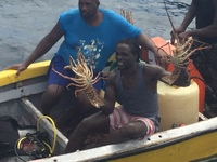 Locals coming beside the ship to offer lobsters