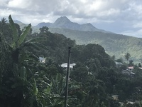 View of the pitons on the way to La Tille Falls - St. Lucia