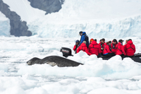 Leopard seal.  My wife is in the Zodiac.  She is the one in the red parka:-