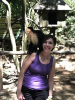 Hanging with the monkey's in Roatan!