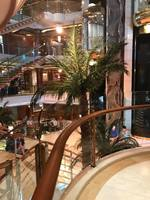 This is the atrium of the Island Princess