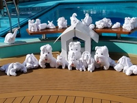Towel animal invasion on the Lido deck