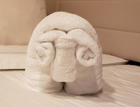 Another Towel Animal