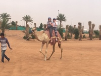 Arabian Nights Tours - Private excursion