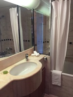 Shower curtain and sink.  The little box is to control the window blinds th