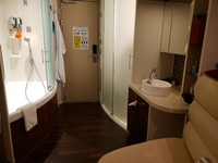 What a crazy and inconvenient bathroom layout with everything in the living