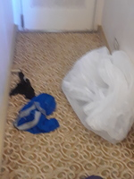 2 pair of DIRTY underwear from previous occupant and trash from previous oc