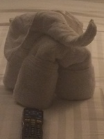One of the nightly towel sculptures