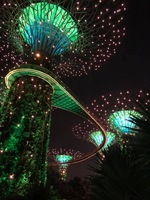 Super Trees light show in Singapore