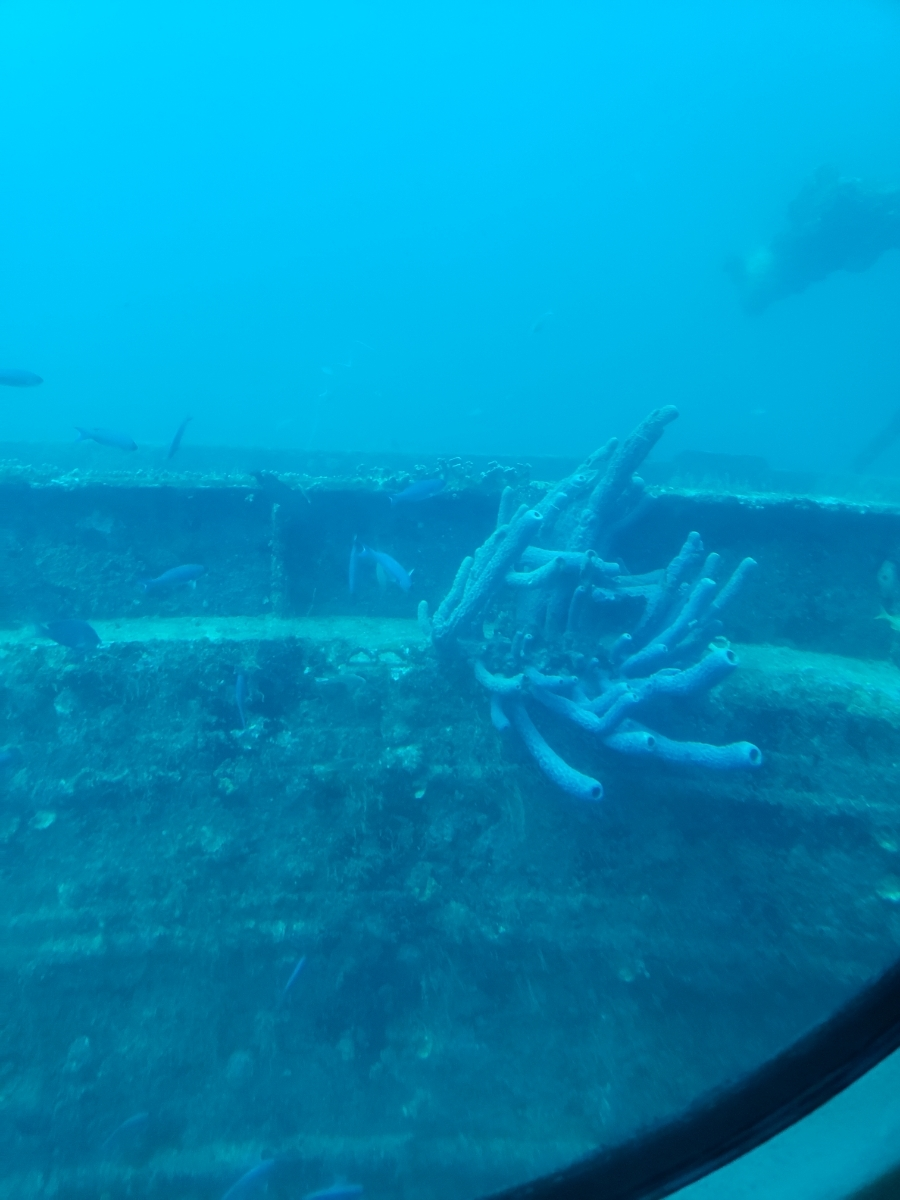 Submarine at Aruba