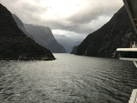 cruising Fiordland   through Milford Sound