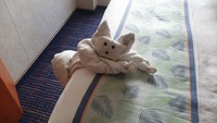 One of the everyday towel animals made by our cabin steward...