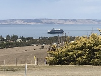 View of Noordam from Kangaroo Island