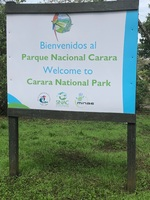 We took a tour in Carara National Park.  We walked a ways on a paved walkwa