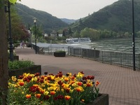 Ship moored at Boppard, Germany